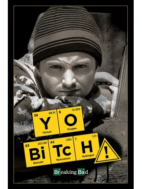 Poster Yo Bitch! Breaking Bad