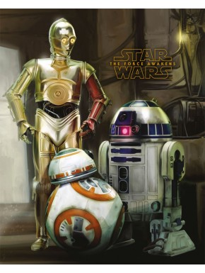 Poster Star Wars Androides 40x50
