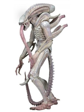 Figura articulada Alien Albino