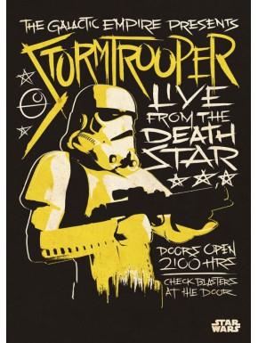 Poster metálico Star Wars Stormtrooper