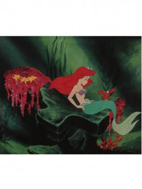 Pañuelo Disney Sirenita