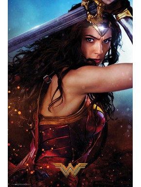 Póster Wonder Woman Defend