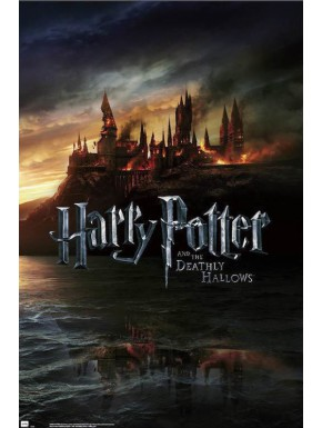 Poster Harry Potter Reliquias
