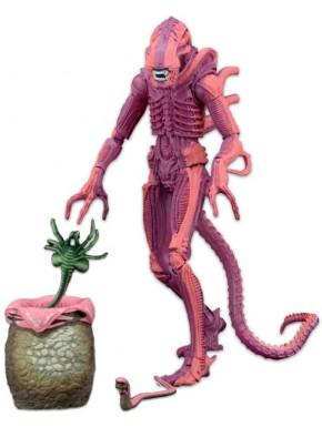 Figura Aliens Xenomorph Warrior Neca