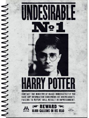 Libreta Harry Potter Indeseable