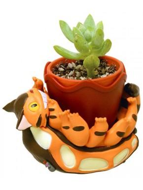 Maceta Gatobus 8 cm Totoro