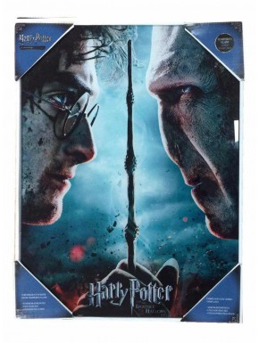 Poster vidrio Harry Potter vs Voldemort