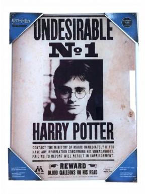 Poster vidrio Harry Potter vs Voldemort