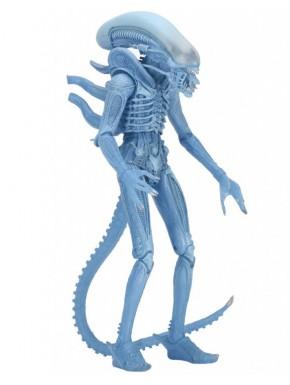 Figura Xenomorph Alien NECA 23 cm Serie 11