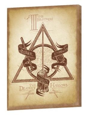 Cuadro Lienzo Harry Potter Reliquias de la Muerte