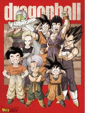 Cuadro Dragon Ball Z Grupo