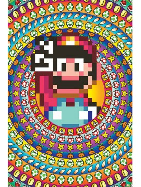 Póster Super Mario Power Ups 61 x 91 cm