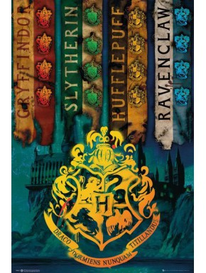 Póster Harry Potter Hogwarts Casas