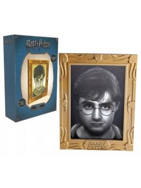 Lámpara Harry Potter Retrato Harry