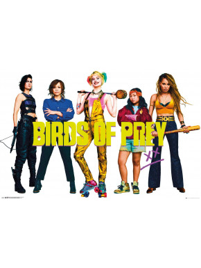 Póster Birds of Prey DC Comics