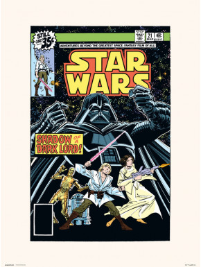 Lámina Star Wars 21 30 x 40 cm