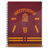 Libreta Gryffindor Quidditch Harry Potter