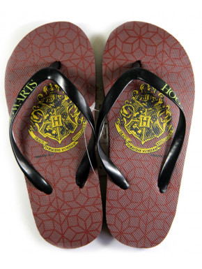 Chanclas niño Harry Potter Hogwarts