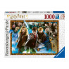 Puzzle Harry Potter Young Wizards 1000 piezas