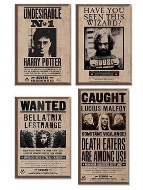 Set de Imanes Harry Potter